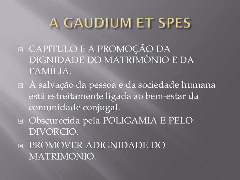 A GAUDIUM ET SPESCAPÍTULO I: A PROMOÇÃO DA DIGNIDADE DO MATRIMÔNIO E DA FAMÍLIA.
