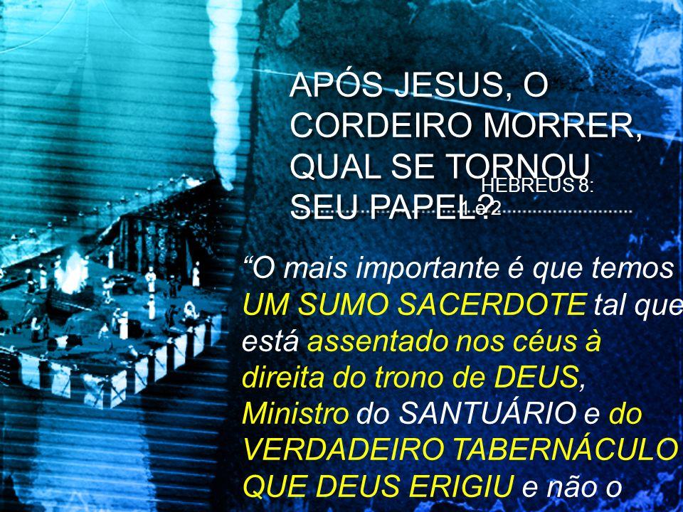 APÓS JESUS, O CORDEIRO MORRER, QUAL SE TORNOU SEU PAPEL