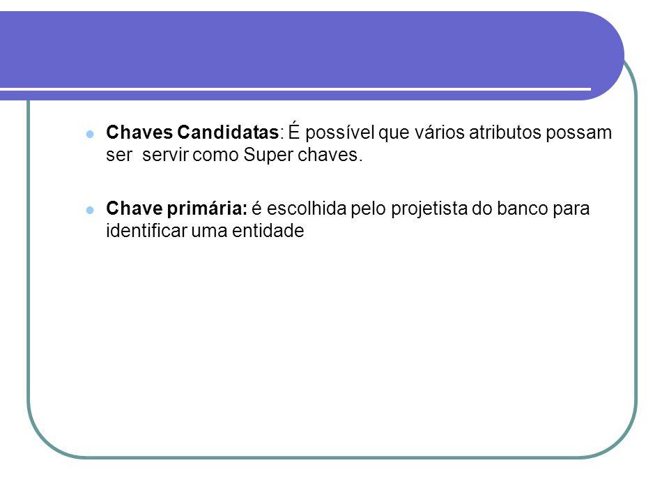 Chaves Candidatas: É possível que vários atributos possam ser servir como Super chaves.