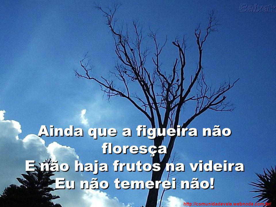 Ainda que a figueira não floresça E não haja frutos na videira Eu não temerei não!