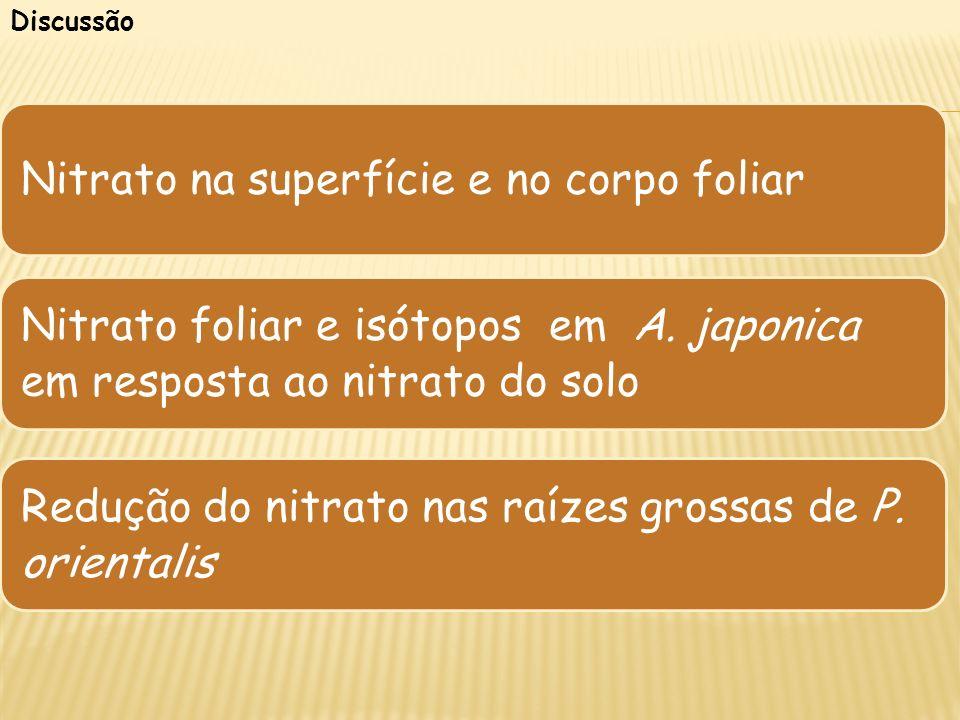 Nitrato na superfície e no corpo foliar