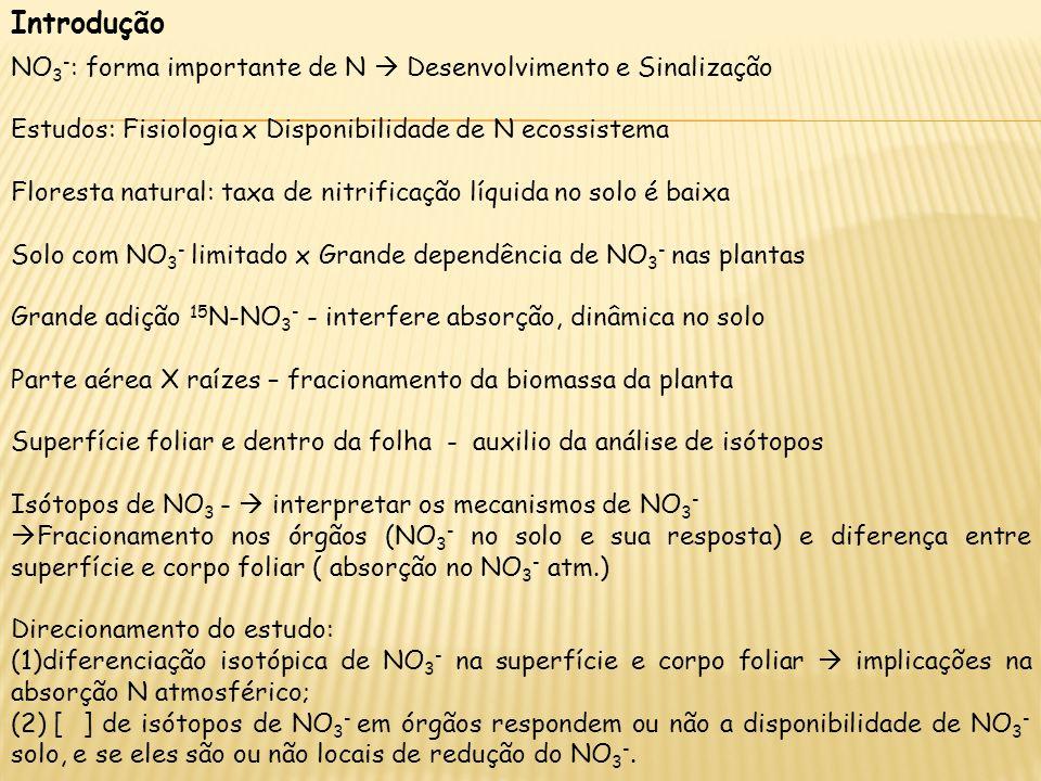 Introdução NO3-: forma importante de N  Desenvolvimento e Sinalização