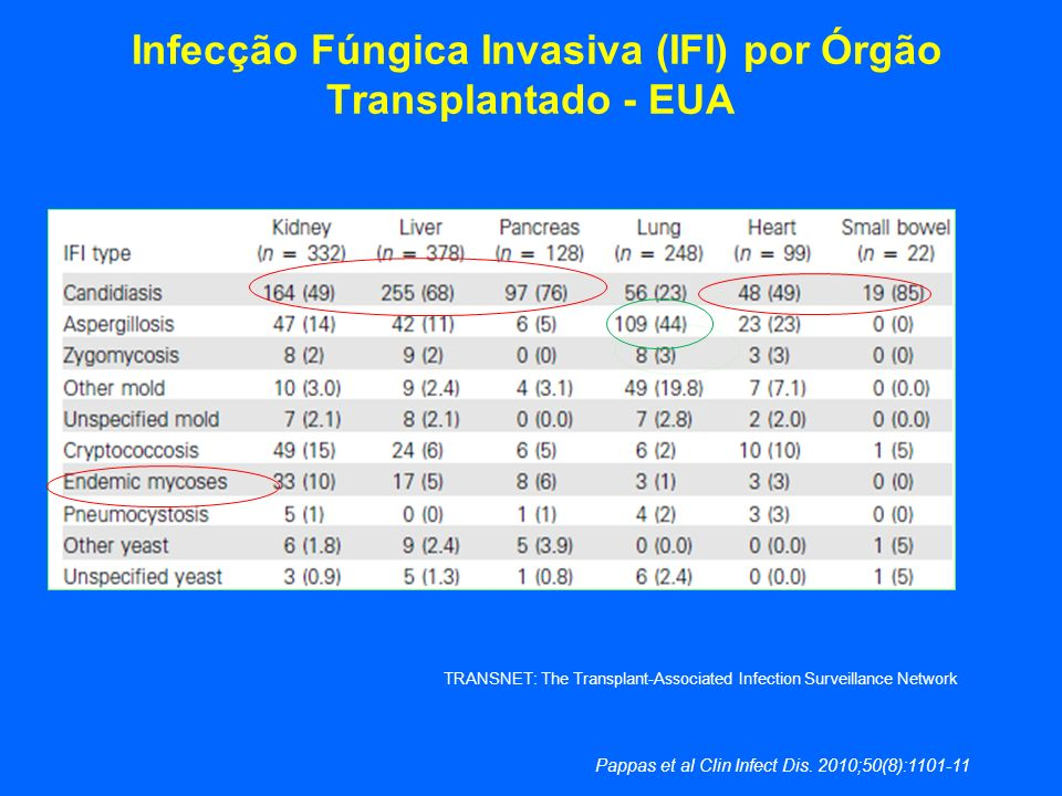 Infecção Fúngica Invasiva (IFI) por Órgão Transplantado - EUA