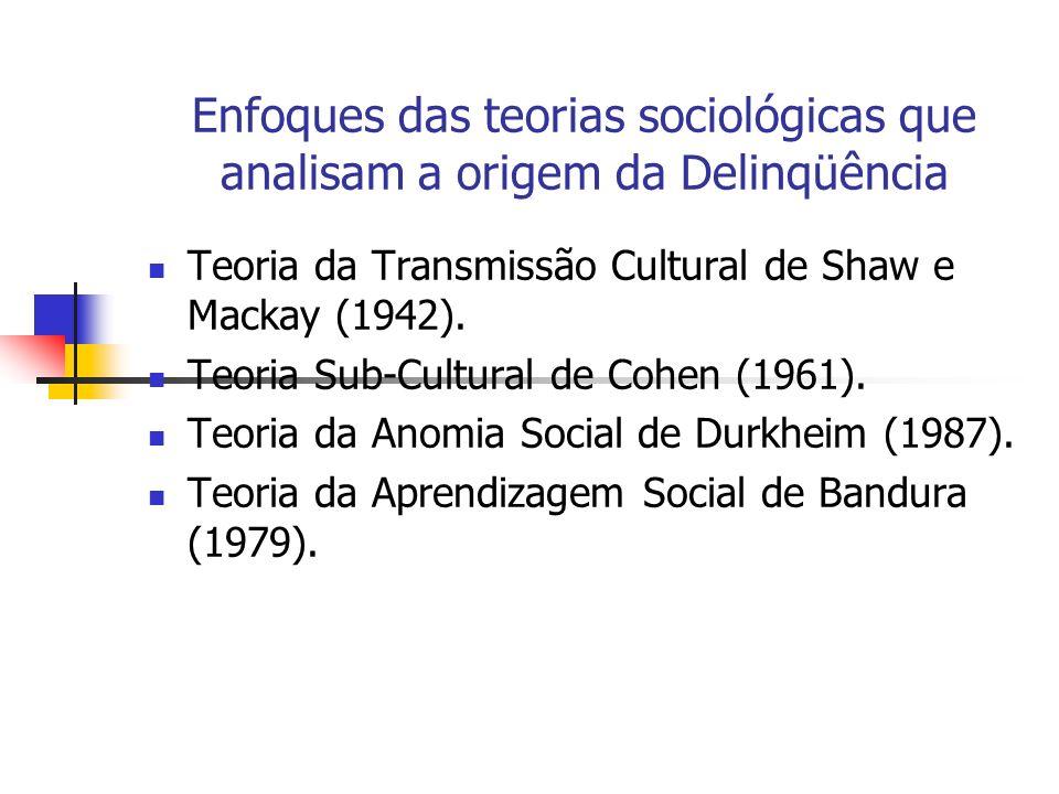Enfoques das teorias sociológicas que analisam a origem da Delinqüência