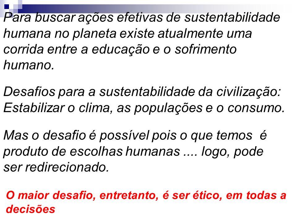 Desafios para a sustentabilidade da civilização: