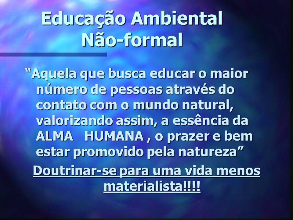 Educação Ambiental Não-formal