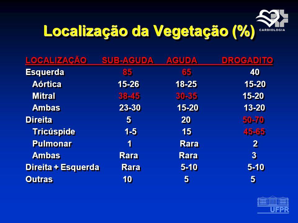 Localização da Vegetação (%)