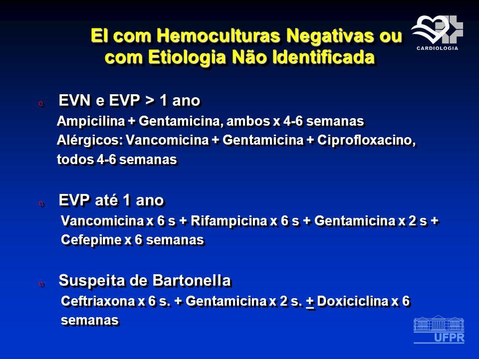 EI com Hemoculturas Negativas ou com Etiologia Não Identificada
