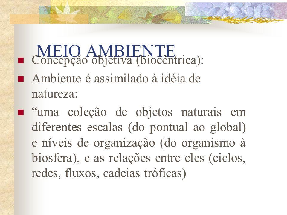 MEIO AMBIENTE Concepção objetiva (biocêntrica):
