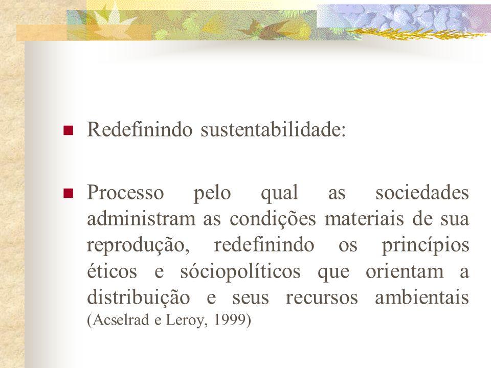 Redefinindo sustentabilidade: