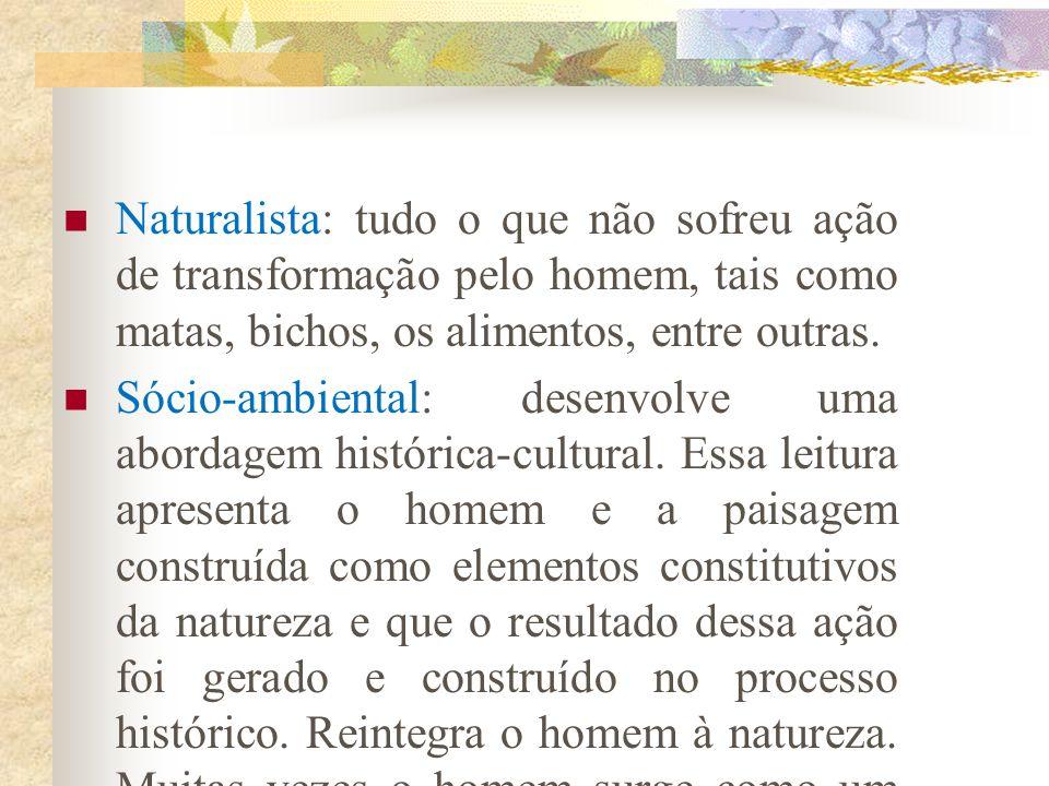 Naturalista: tudo o que não sofreu ação de transformação pelo homem, tais como matas, bichos, os alimentos, entre outras.