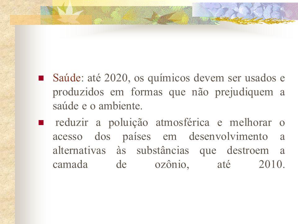 Saúde: até 2020, os químicos devem ser usados e produzidos em formas que não prejudiquem a saúde e o ambiente.