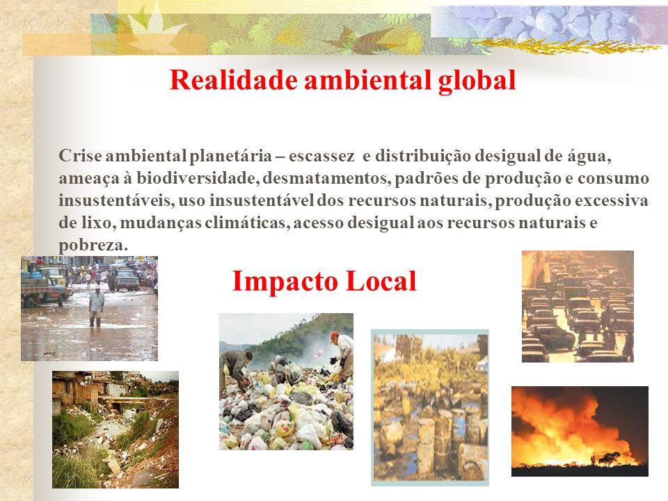 Realidade ambiental global