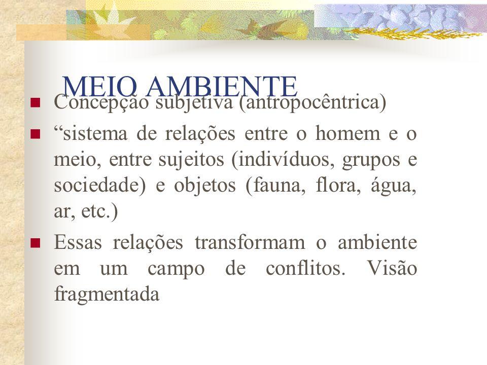 MEIO AMBIENTE Concepção subjetiva (antropocêntrica)