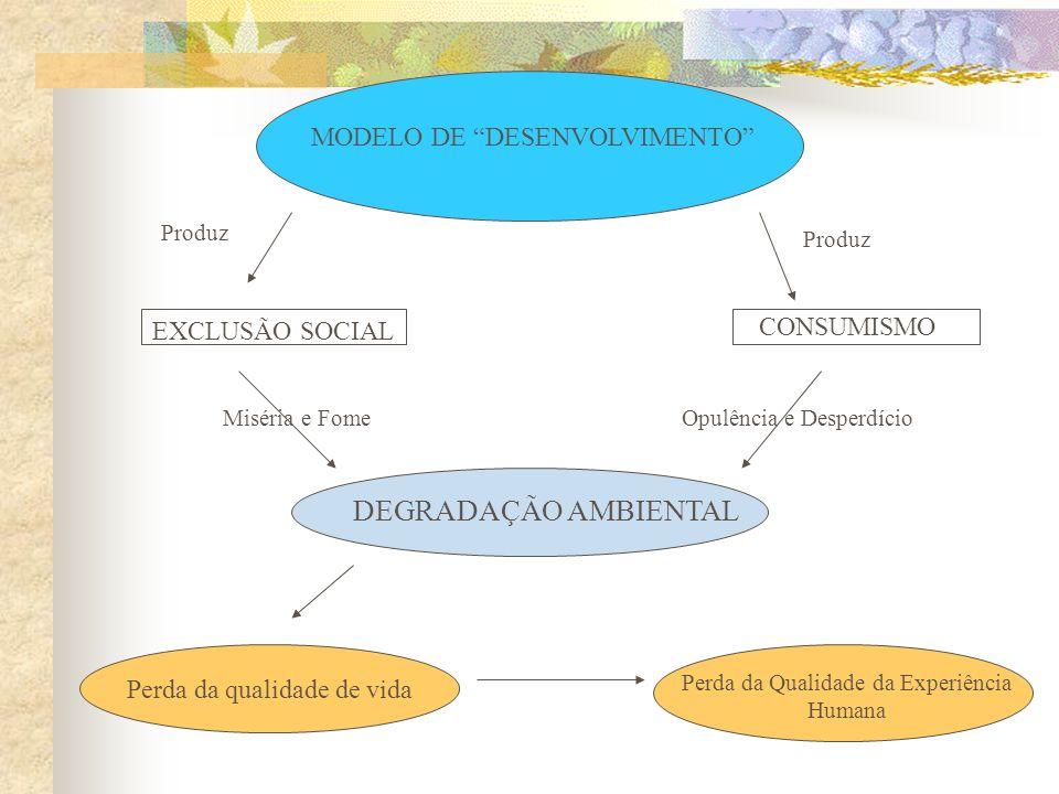 DEGRADAÇÃO AMBIENTAL MODELO DE DESENVOLVIMENTO CONSUMISMO