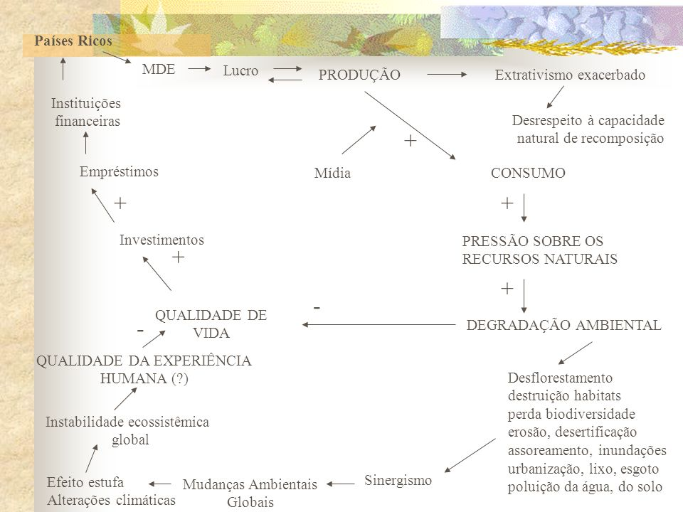 + + + + + - - Países Ricos MDE Lucro PRODUÇÃO Extrativismo exacerbado