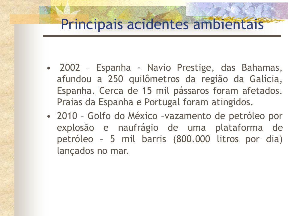 Principais acidentes ambientais