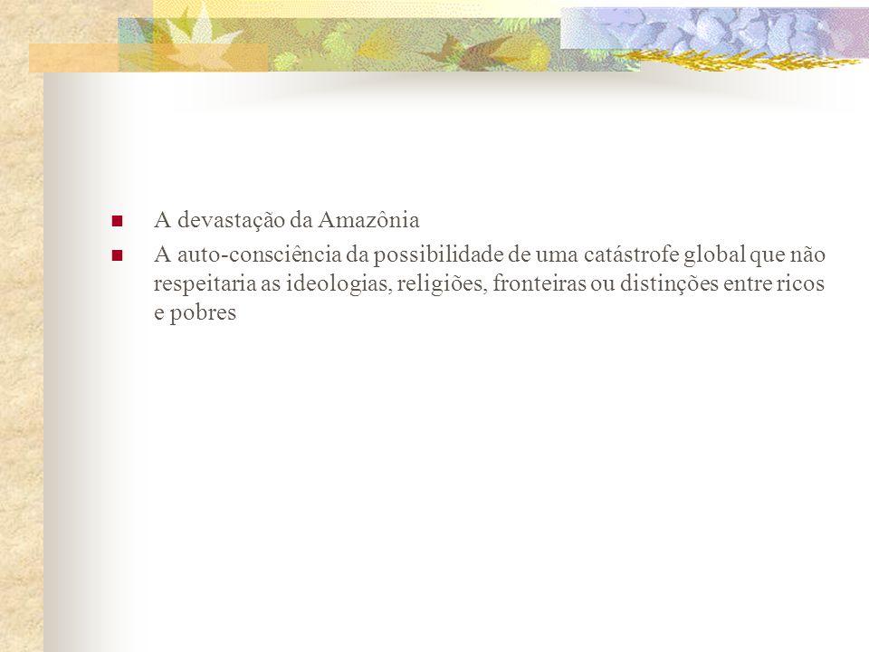 A devastação da Amazônia