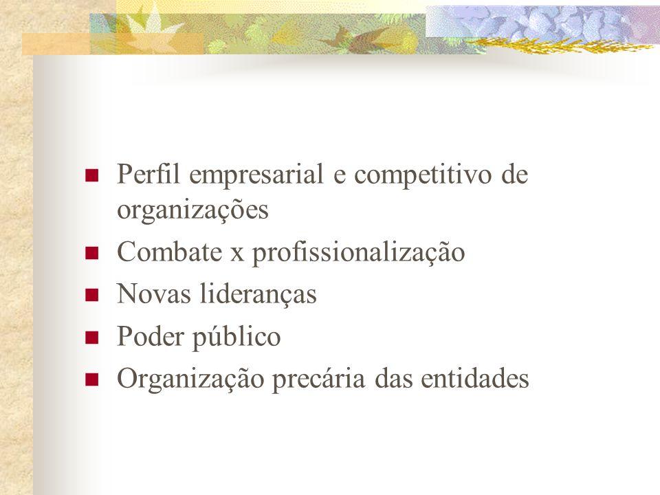 Perfil empresarial e competitivo de organizações
