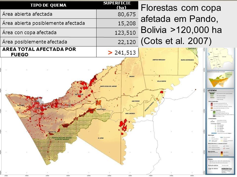 > 241,513AREA TOTAL AFECTADA POR FUEGO. 22,120. Área posiblemente afectada. 123,510. Área con copa afectada.