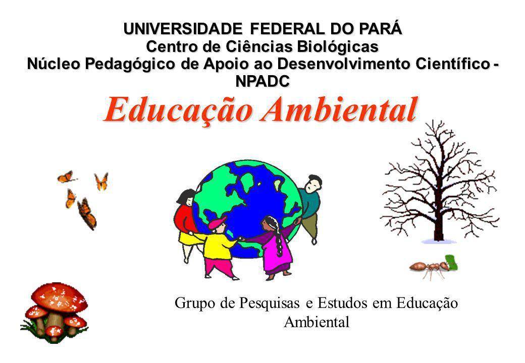 Grupo de Pesquisas e Estudos em Educação Ambiental