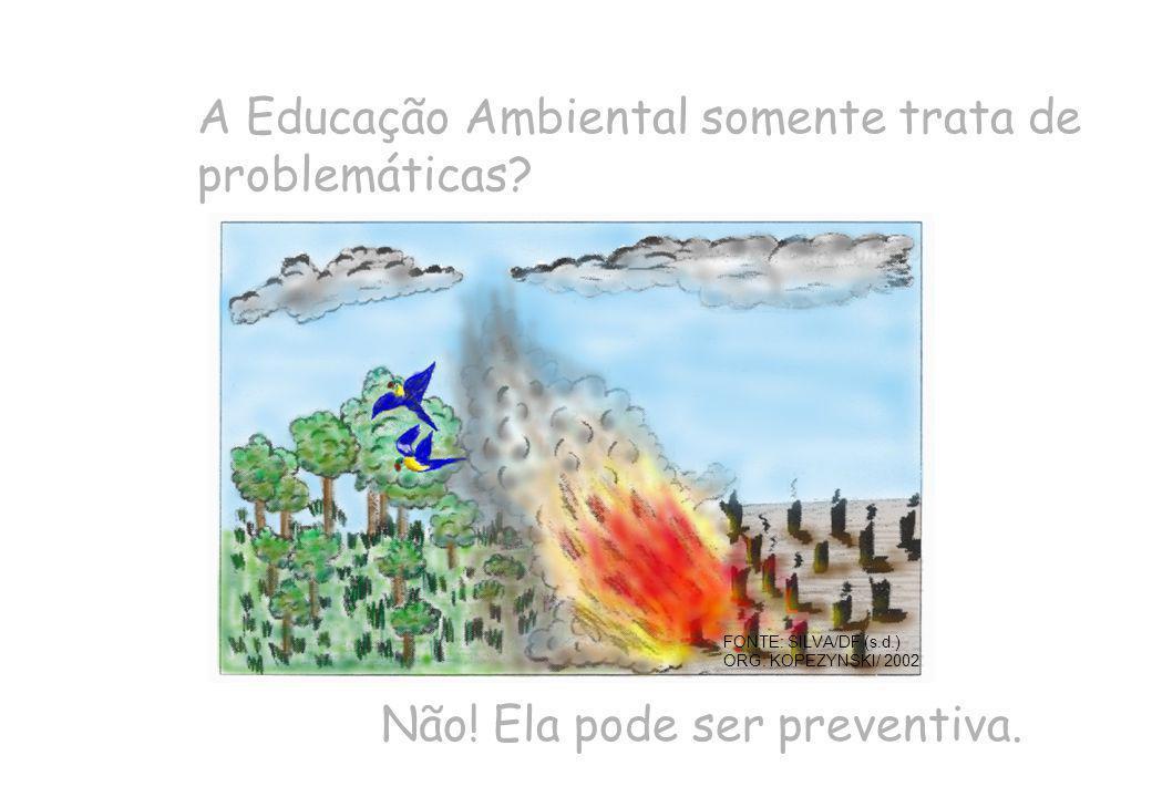 A Educação Ambiental somente trata de problemáticas