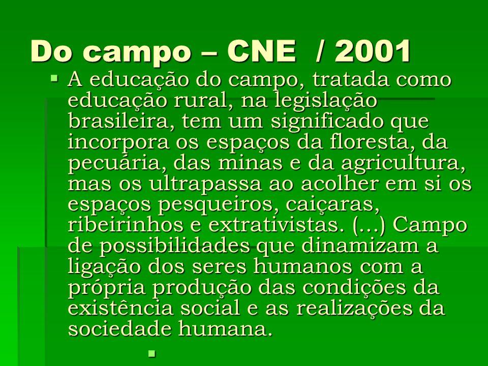 Do campo – CNE / 2001