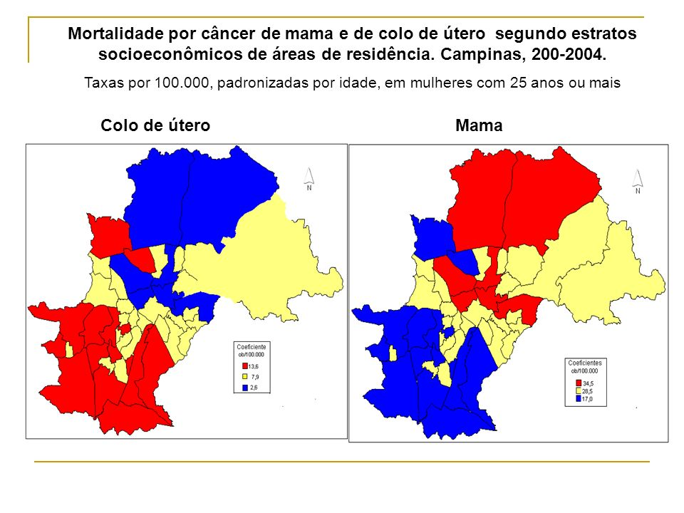 Mortalidade por câncer de mama e de colo de útero segundo estratos socioeconômicos de áreas de residência. Campinas, 200-2004.