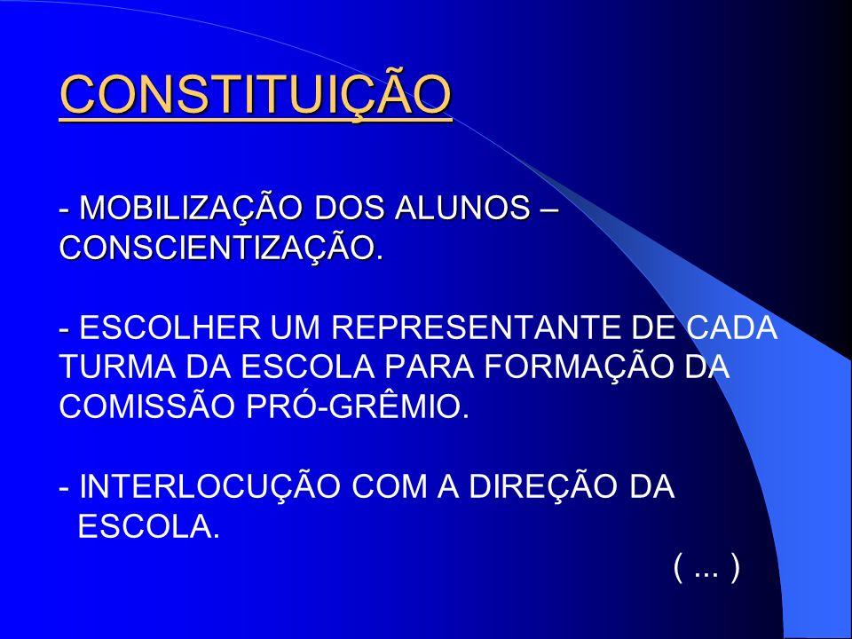 CONSTITUIÇÃO - MOBILIZAÇÃO DOS ALUNOS – CONSCIENTIZAÇÃO