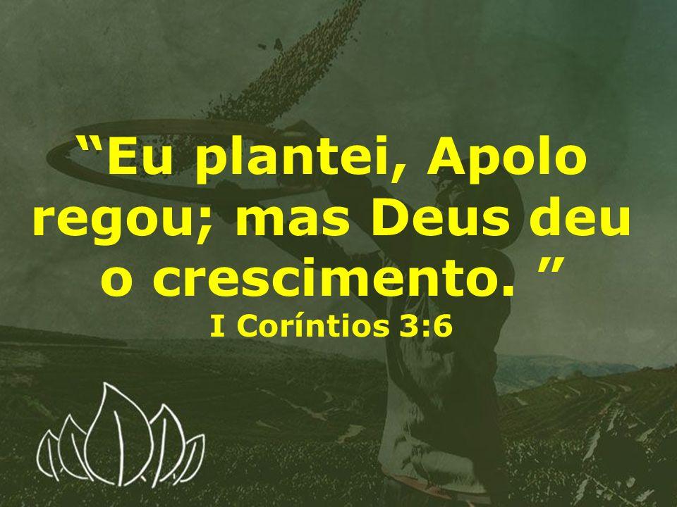 Eu plantei, Apolo regou; mas Deus deu o crescimento.