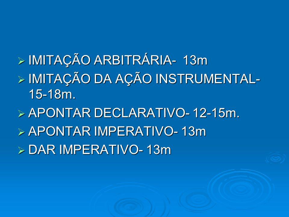 IMITAÇÃO ARBITRÁRIA- 13m