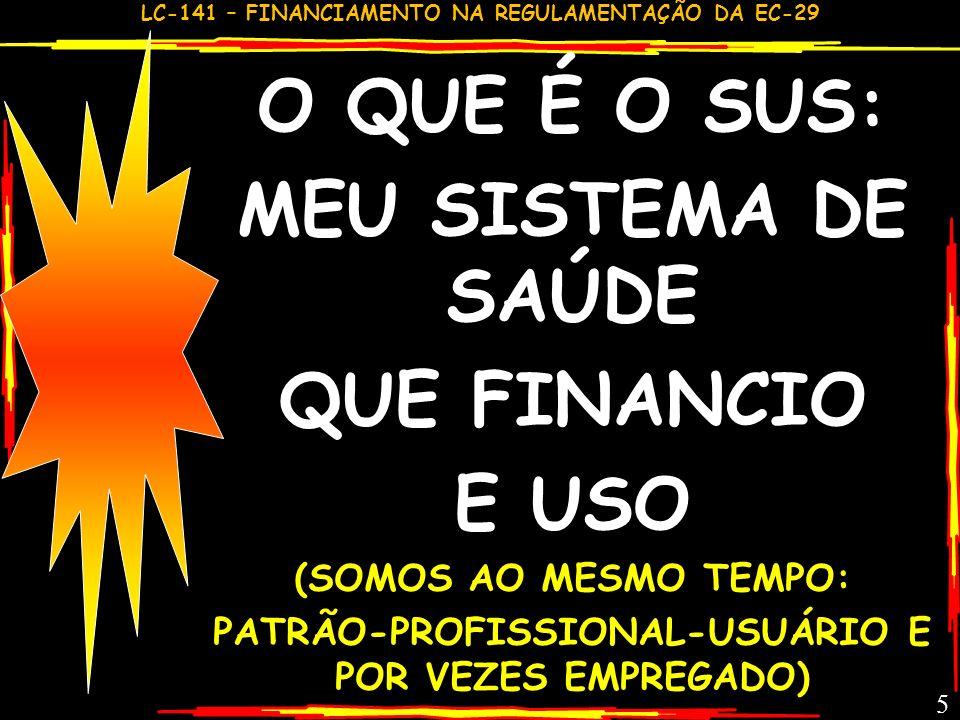 PATRÃO-PROFISSIONAL-USUÁRIO E POR VEZES EMPREGADO)