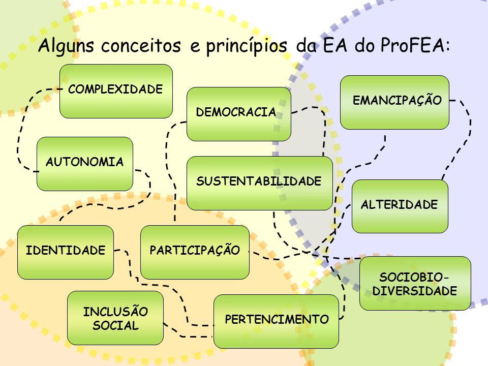 Alguns conceitos e princípios da EA do ProFEA: