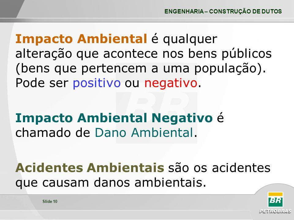 Impacto Ambiental Negativo é chamado de Dano Ambiental.