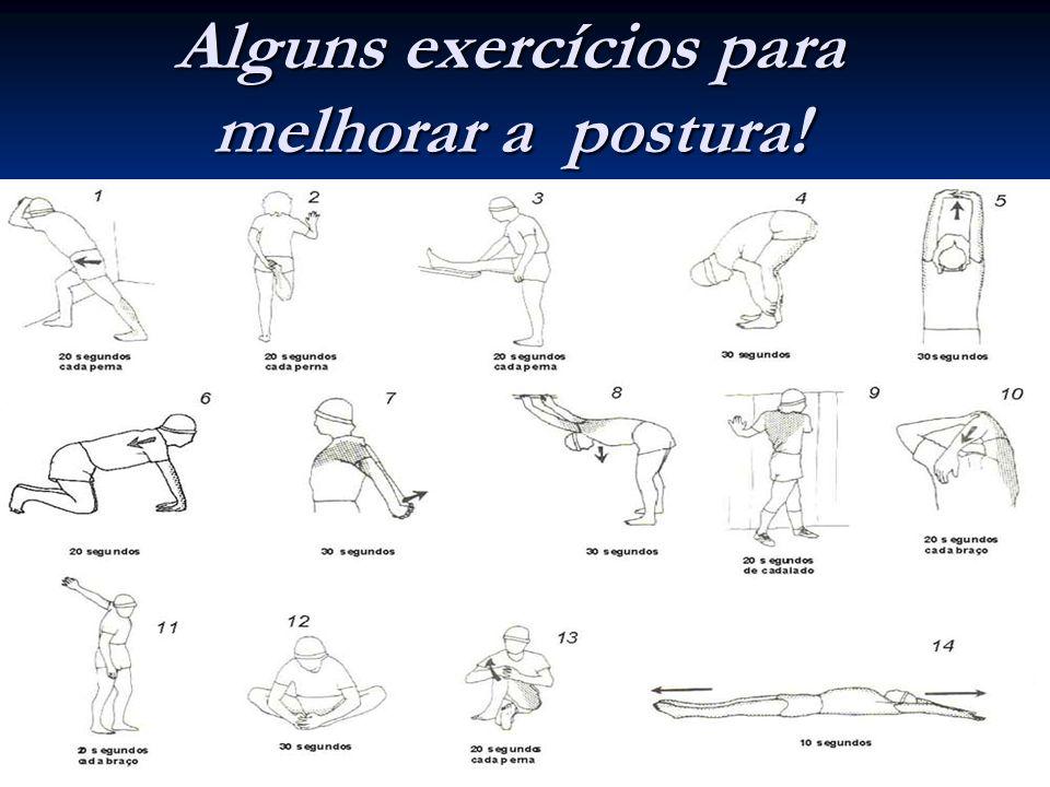 Alguns exercícios para melhorar a postura!