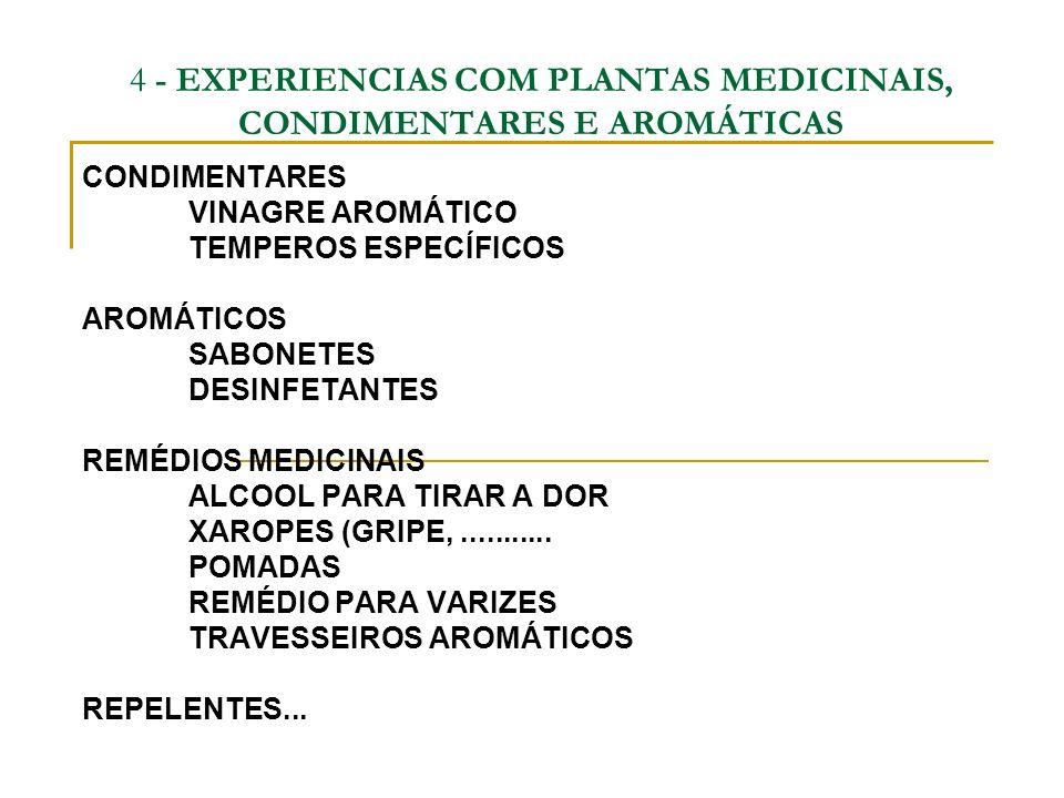 4 - EXPERIENCIAS COM PLANTAS MEDICINAIS, CONDIMENTARES E AROMÁTICAS