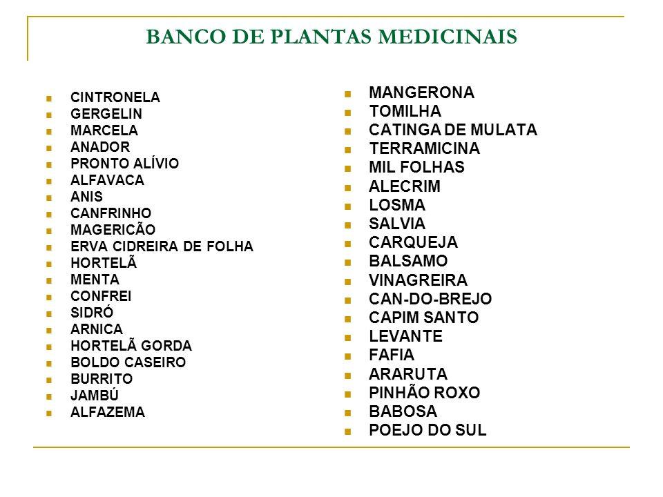 BANCO DE PLANTAS MEDICINAIS
