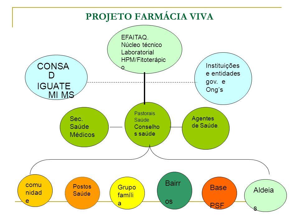 PROJETO FARMÁCIA VIVA CONSAD IGUATEMI MS Bairros Base Aldeias PSF