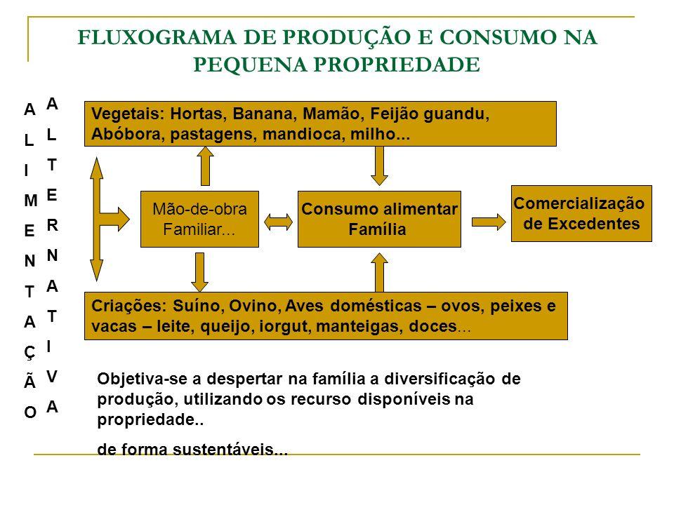 FLUXOGRAMA DE PRODUÇÃO E CONSUMO NA PEQUENA PROPRIEDADE
