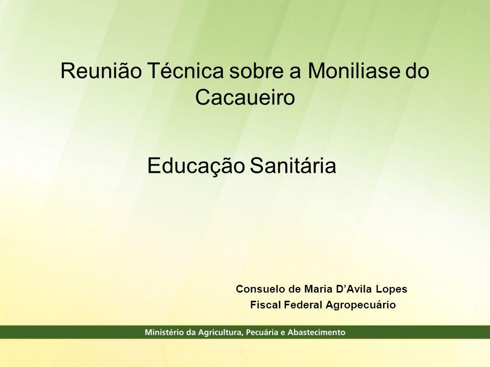 Consuelo de Maria D'Avila Lopes