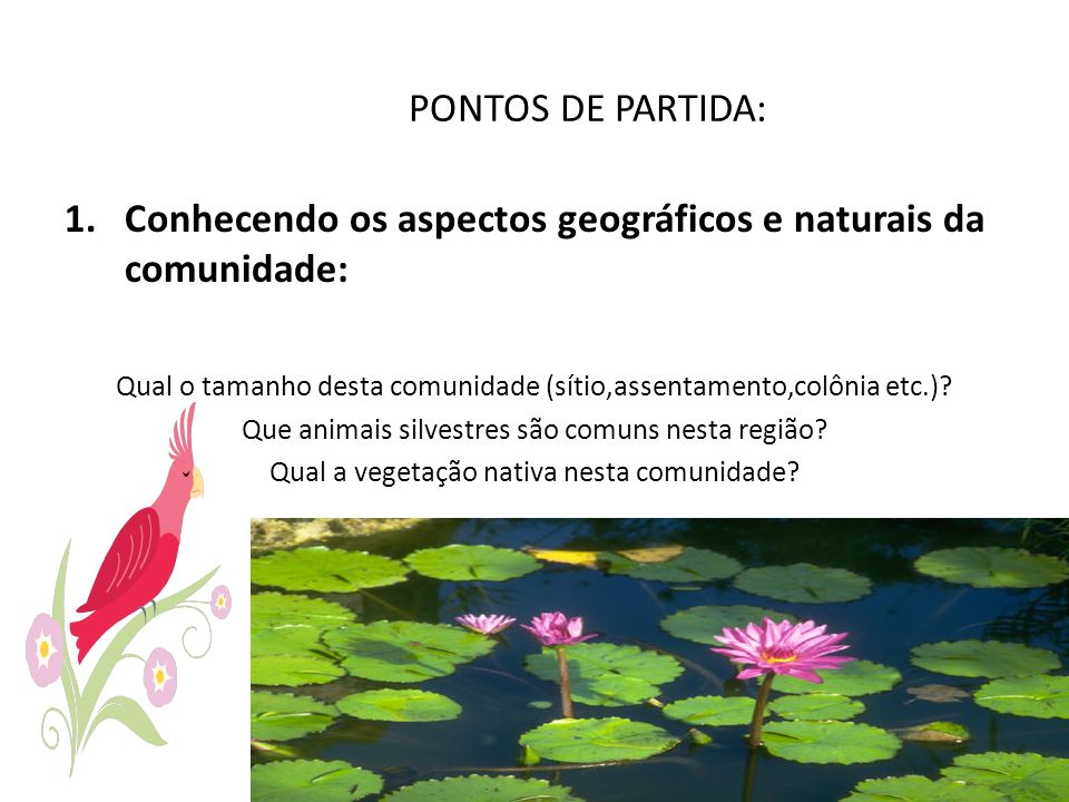 PONTOS DE PARTIDA: Conhecendo os aspectos geográficos e naturais da comunidade: Qual o tamanho desta comunidade (sítio,assentamento,colônia etc.)