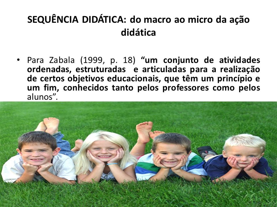 SEQUÊNCIA DIDÁTICA: do macro ao micro da ação didática
