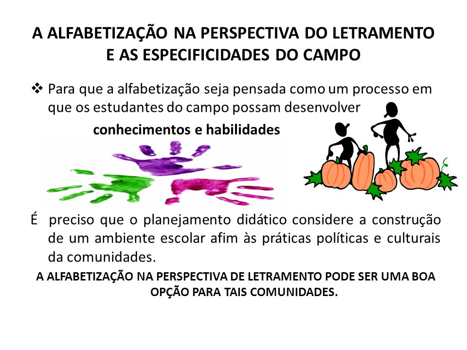 A ALFABETIZAÇÃO NA PERSPECTIVA DO LETRAMENTO E AS ESPECIFICIDADES DO CAMPO