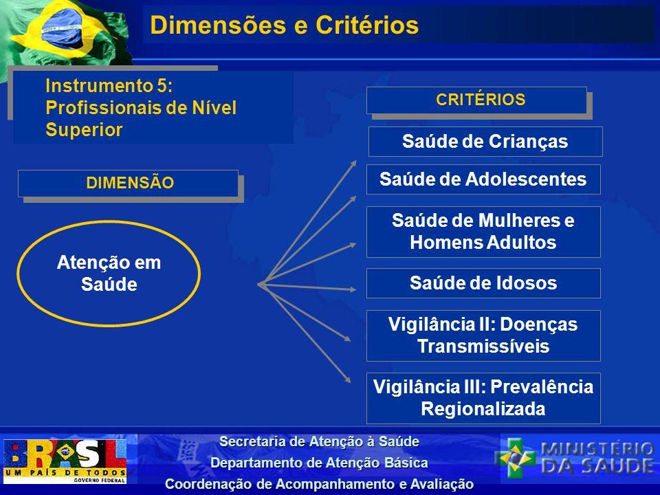 Dimensões e Critérios Instrumento 5: Profissionais de Nível Superior
