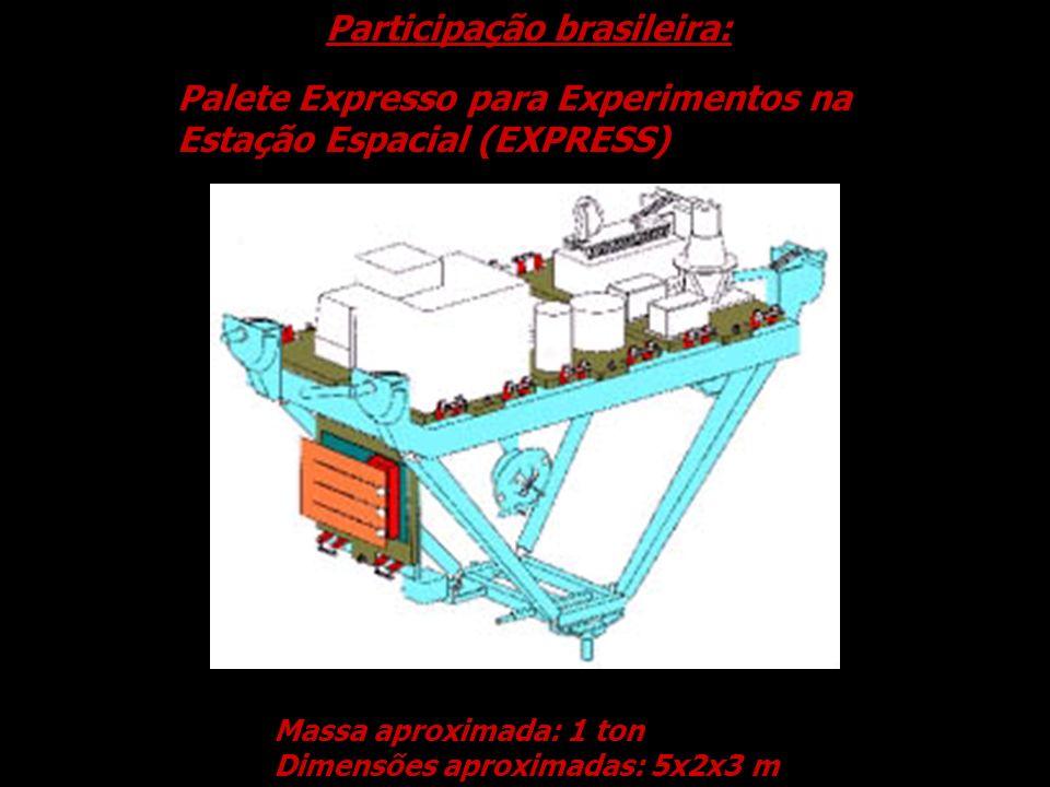 Participação brasileira: