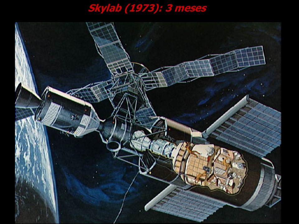 Skylab (1973): 3 meses Cortesia NASA.