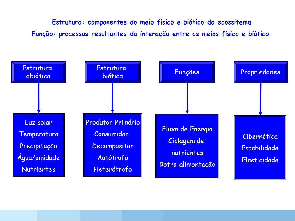 Estrutura: componentes do meio físico e biótico do ecossitema