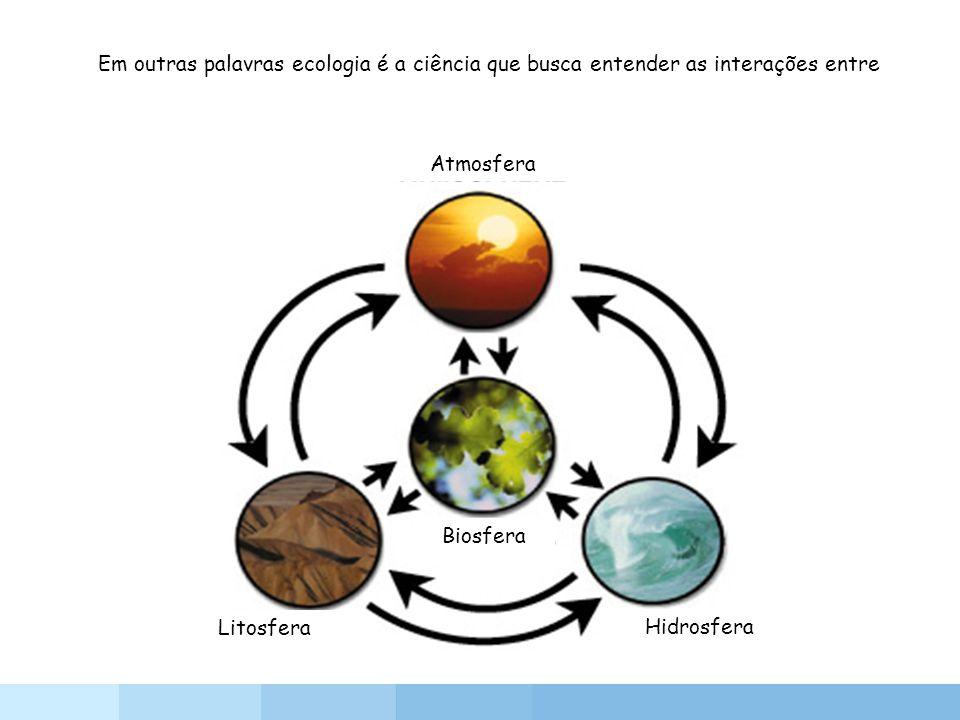 Em outras palavras ecologia é a ciência que busca entender as interações entre