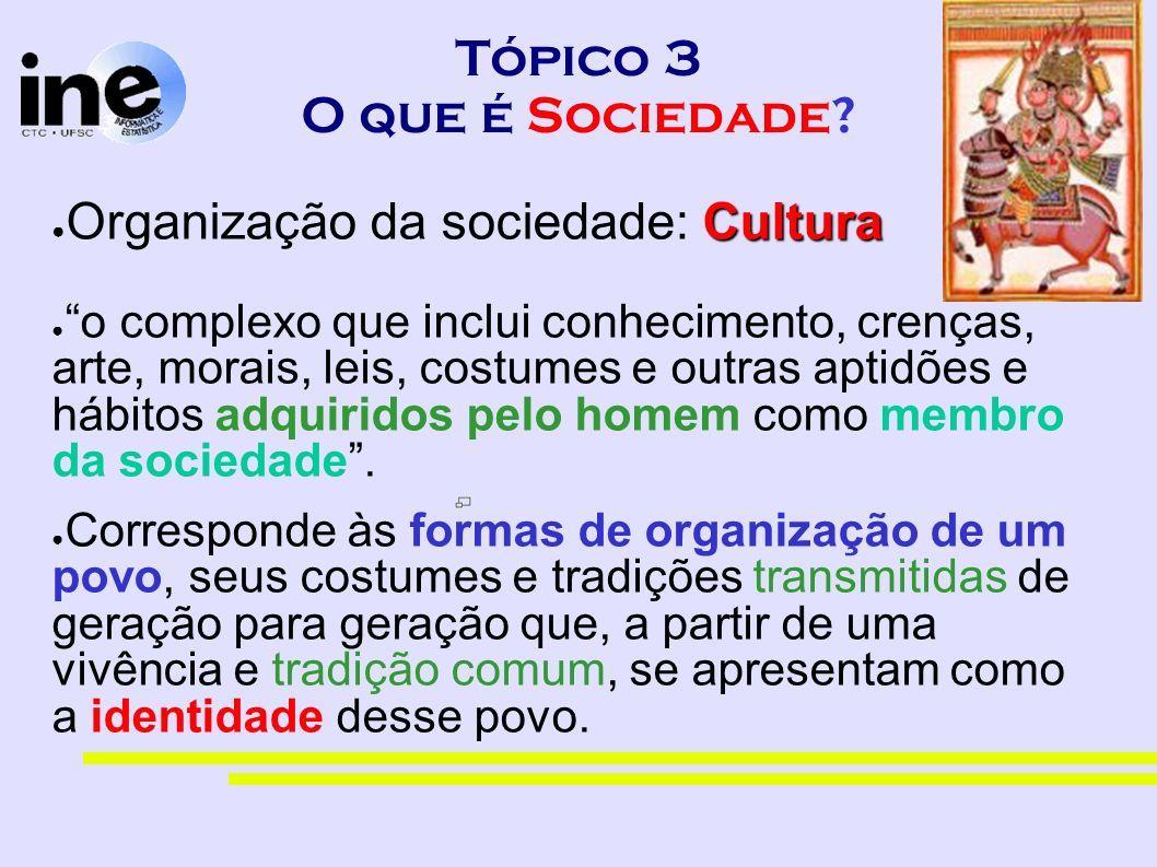 Tópico 3 O que é Sociedade