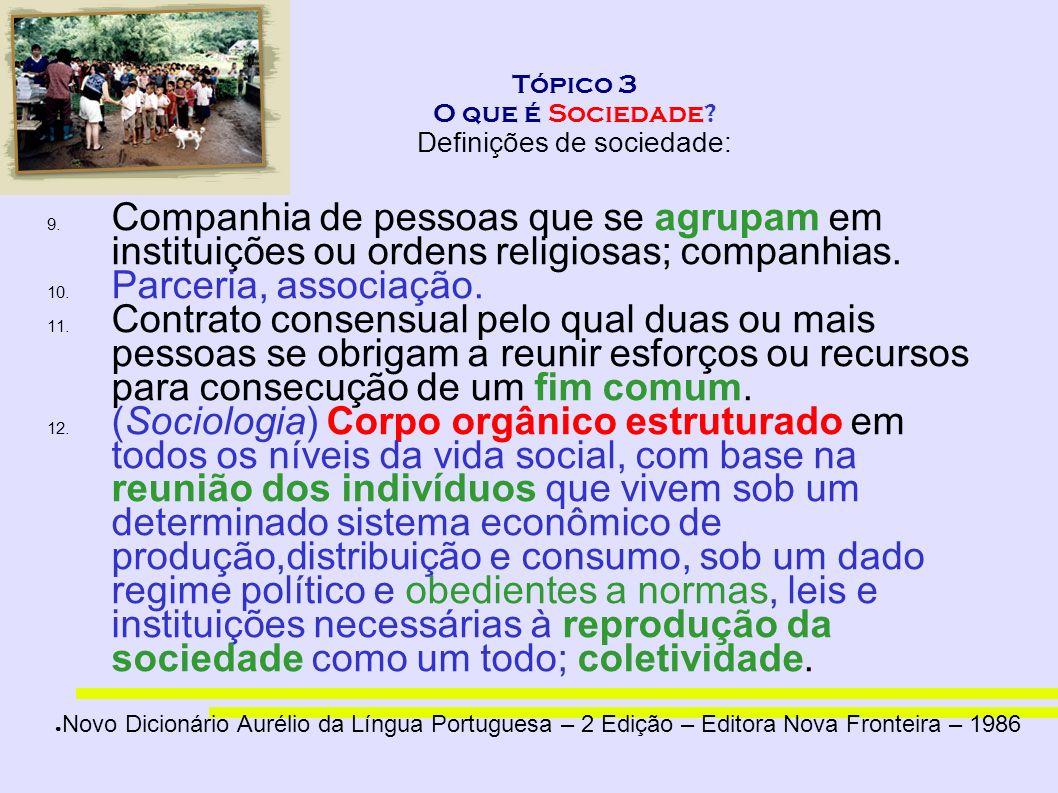 Tópico 3 O que é Sociedade Definições de sociedade: